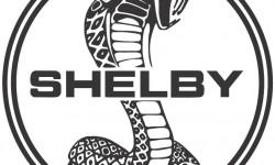 Shelby symbol