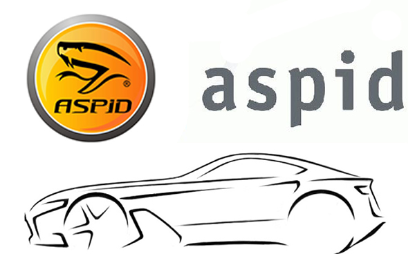 Aspid branding Wallpaper