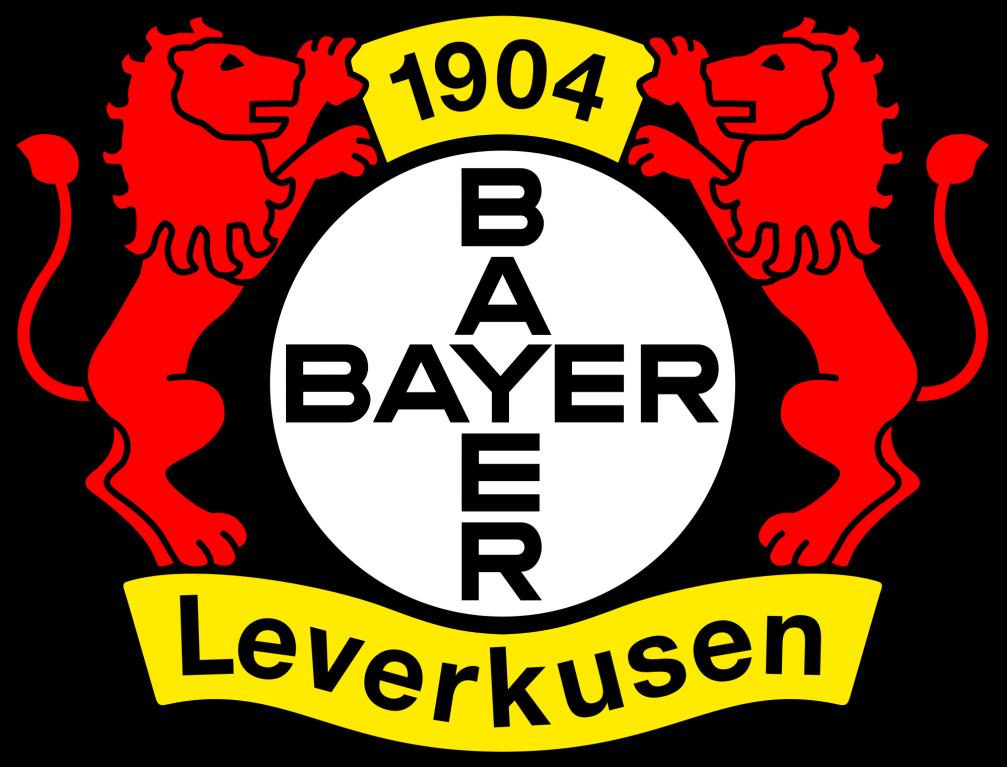 bayer leverkusen brand