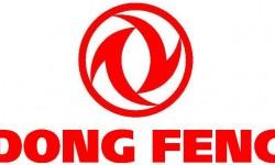 Dong Feng Symbol