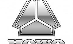 Howo Logo 3D
