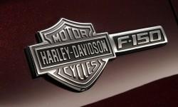 Harley davidson badge