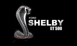 Shelby logo wallpaper