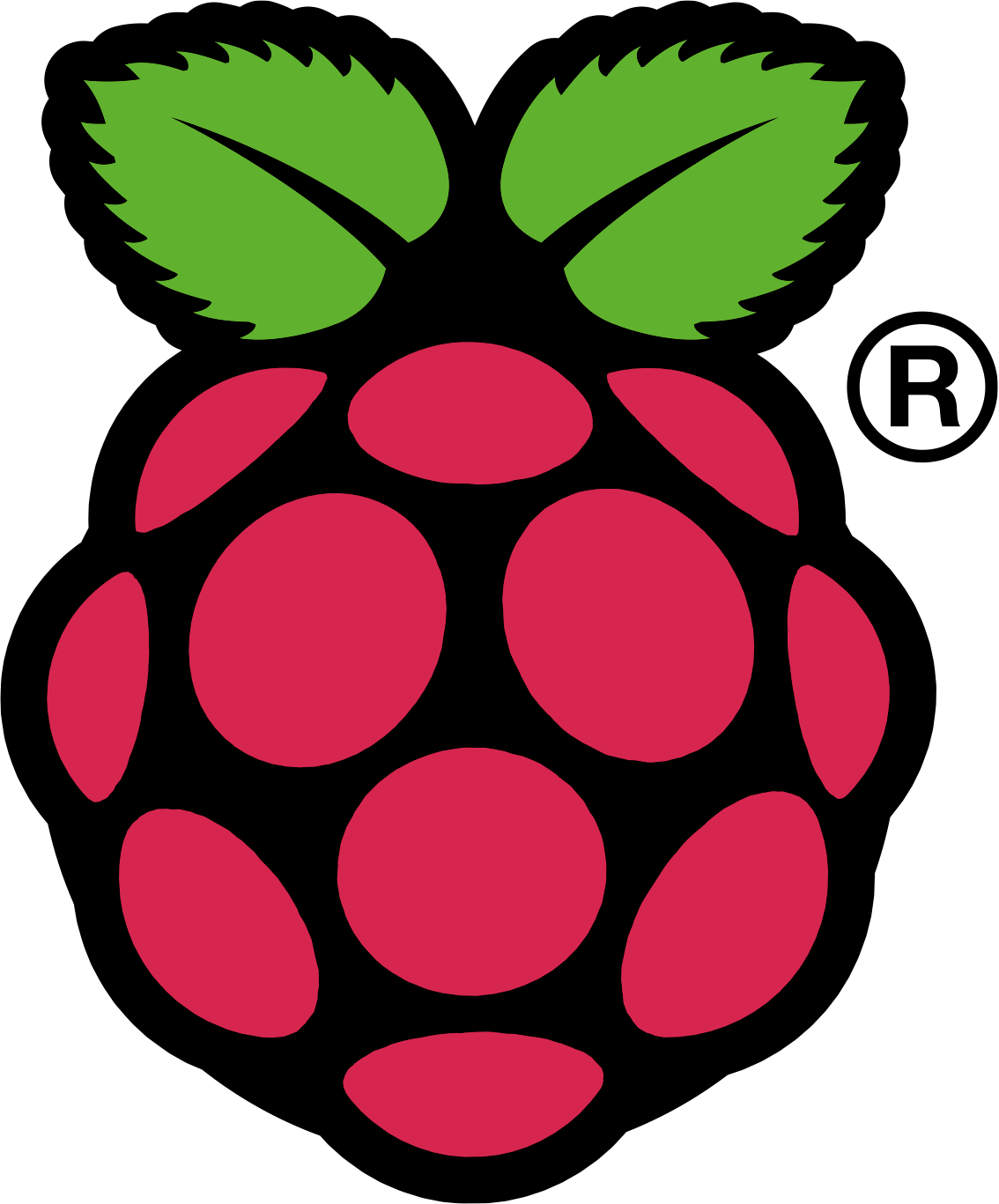 Raspberry Pi Logo Wallpaper