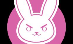 D'VA Logo