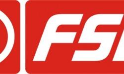 FSO Logo 3D
