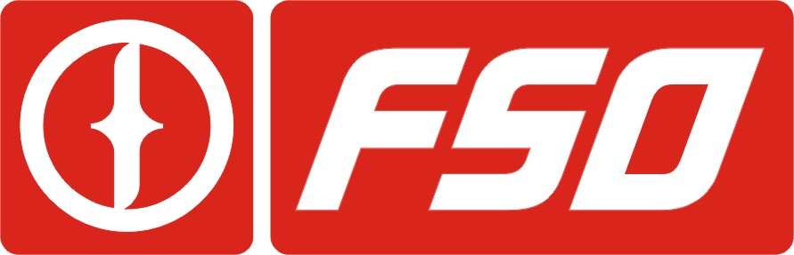 FSO Logo 3D Wallpaper