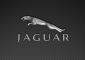 Jaguar Symbol