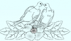 Olivia Collings Logo 3D