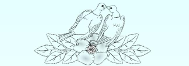 Olivia Collings Logo 3D Wallpaper