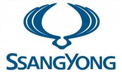 Ssang Yong Symbol