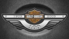 Harley davidson brand