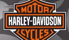 Harley davidson icon