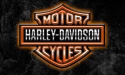 Harley logo