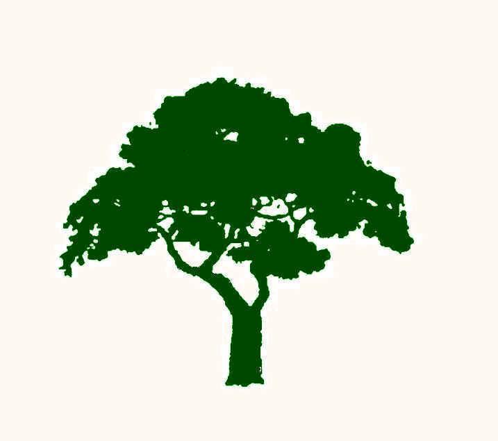 Tree logo Wallpaper