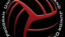Volleyball 3d logo