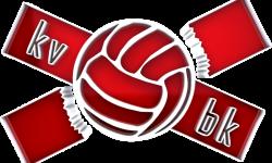 Volleyball background
