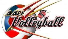 Volleyball HD
