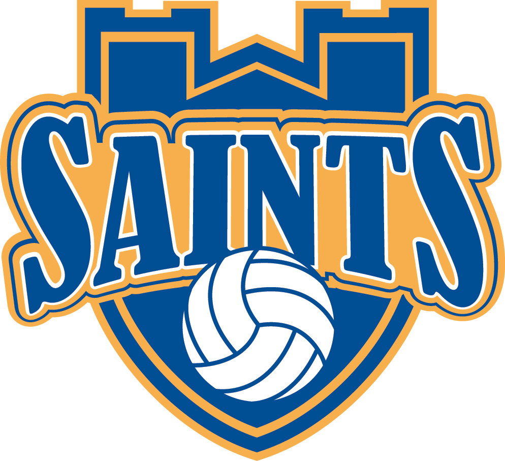 Volleyball logo Wallpaper