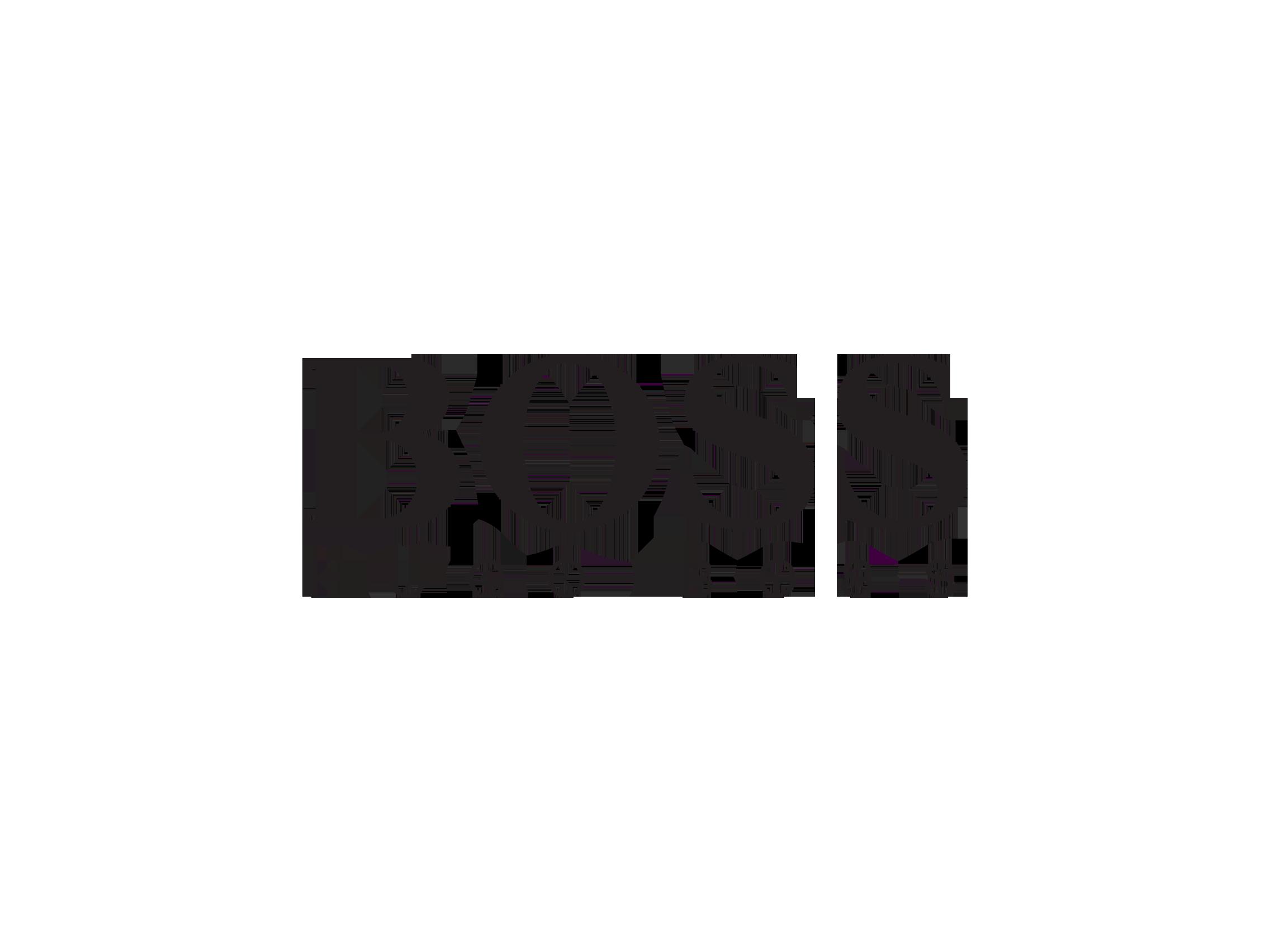 Hugo Boss Logo Wallpaper