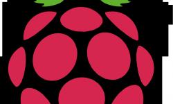 raspberry_pi _logo