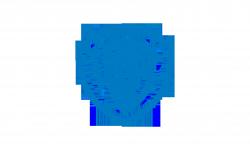 Warner Brothers Blue Logo