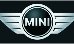 Mini Black Logo
